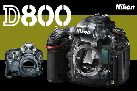Nikon_d800_pic01_4